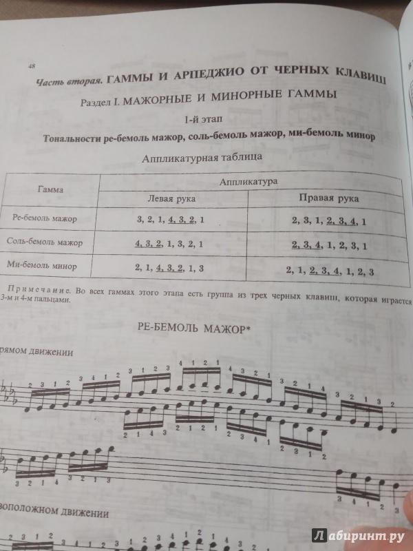 Иллюстрация 6 из 17 для Гаммы и арпеджио для фортепиано | Лабиринт - книги. Источник: Аблесов  Евгений Николаевич