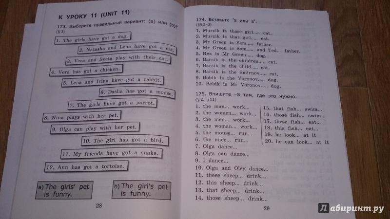 Английский 6 барашкова грамматике по класс решебник язык