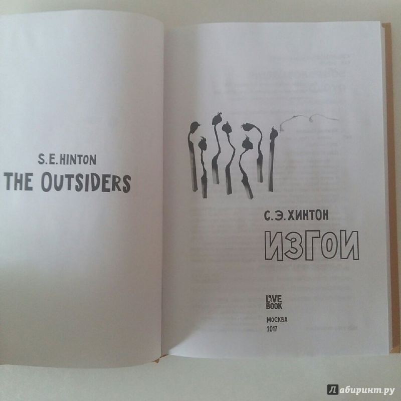 the outsiders by se hinton The outsiders by se hinton by michael j, twinsburg, oh though i usually prefer science fiction and fantasy, reading the outsiders was a phenomenal experience.