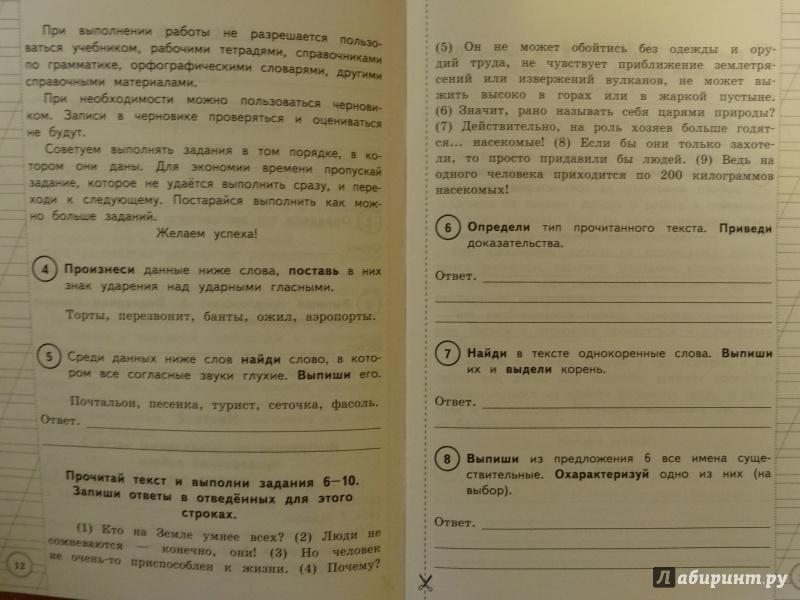 Всероссийская проверочная решебник работа язык русский