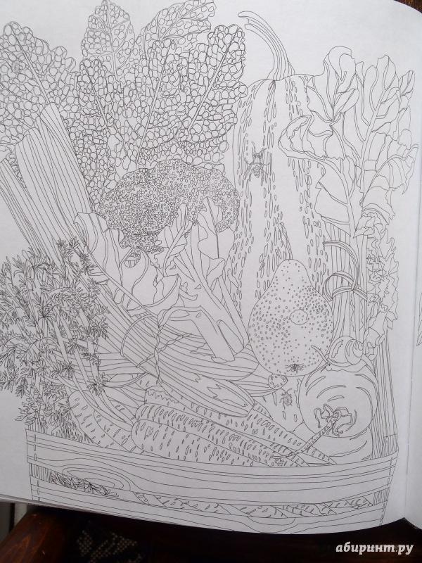 Иллюстрация 50 из 77 для Сад радостей земных. Книга для ...