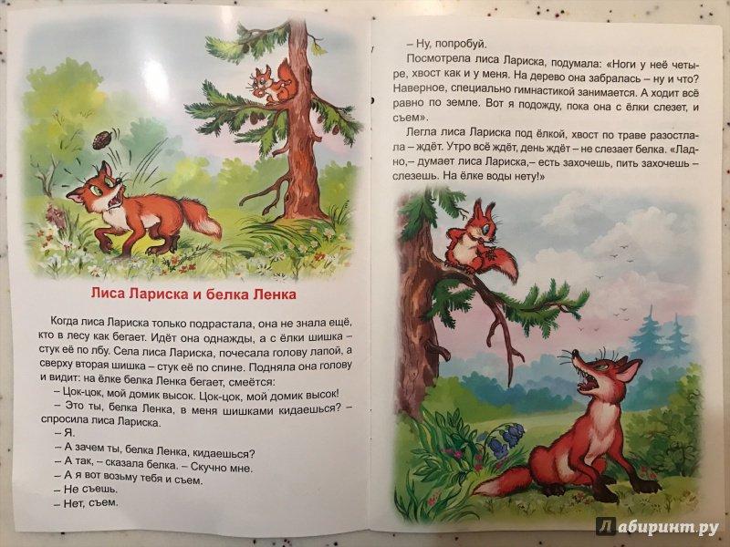 Иллюстрация 2 из 18 для Лиса Лариска и белка Ленка - Николай Грибачев | Лабиринт - книги. Источник: Носкова  Наталья
