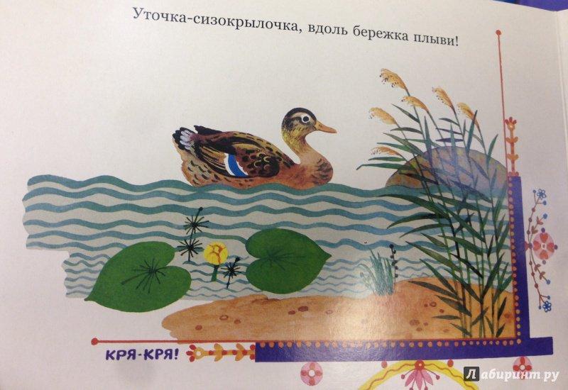 Иллюстрация 6 из 22 для Курочка-рябушечка | Лабиринт - книги. Источник: Савчук Ирина