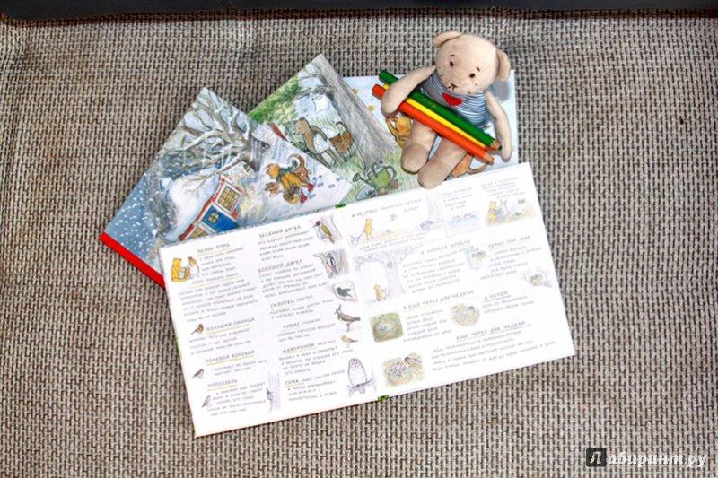 Иллюстрация 28 из 45 для Весна мишки Бруно - Гунилла Ингвес   Лабиринт - книги. Источник: Татьяна Сошникова