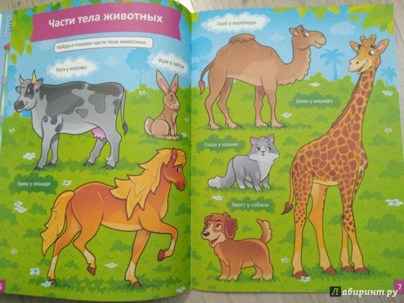 Иллюстрация 19 из 27 для Я учусь! Развитие речи - Елена Бурак | Лабиринт - книги. Источник: Тайна