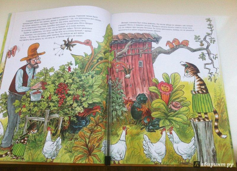 Иллюстрация 44 из 48 для Чужак в огороде - Свен Нурдквист | Лабиринт - книги. Источник: Гавриленко  Татьяна
