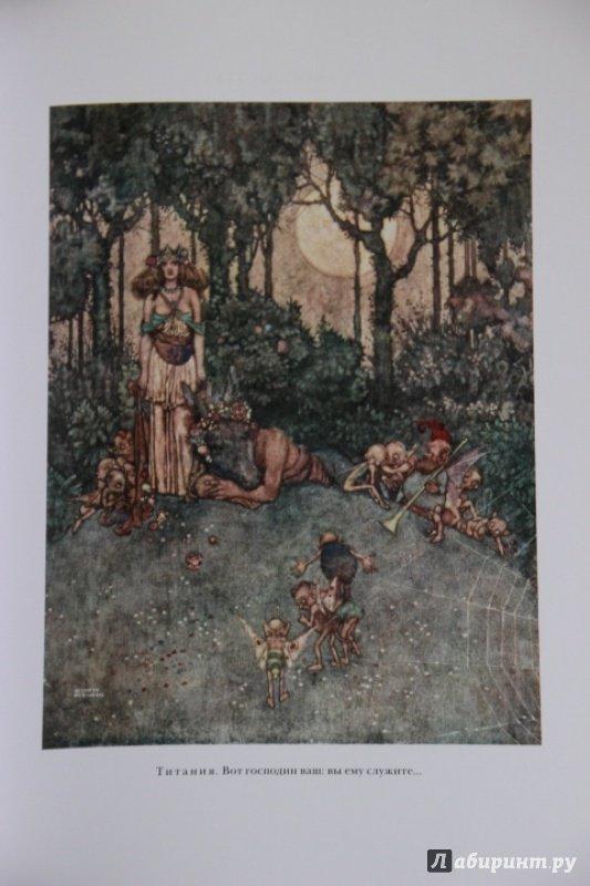 Иллюстрация 9 из 48 для Сон в летнюю ночь. Двенадцатая ночь - Уильям Шекспир | Лабиринт - книги. Источник: Blackboard_Writer