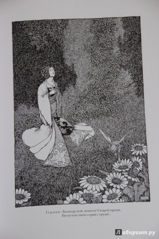 Иллюстрация 11 из 48 для Сон в летнюю ночь. Двенадцатая ночь - Уильям Шекспир | Лабиринт - книги. Источник: Blackboard_Writer