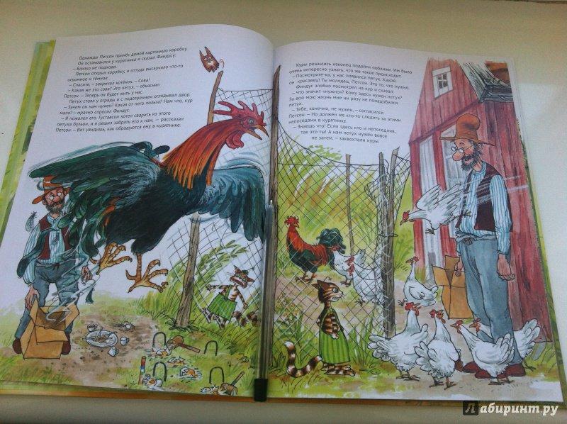 Иллюстрация 48 из 48 для Чужак в огороде - Свен Нурдквист | Лабиринт - книги. Источник: Гавриленко  Татьяна
