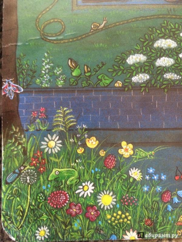 Иллюстрация 38 из 61 для Ночная книга (виммельбух) - Ротраут Бернер   Лабиринт - книги. Источник: wonna `be