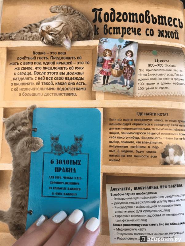 Медицинская книжка для кошек согласие собственников на временную регистрацию по месту жительства