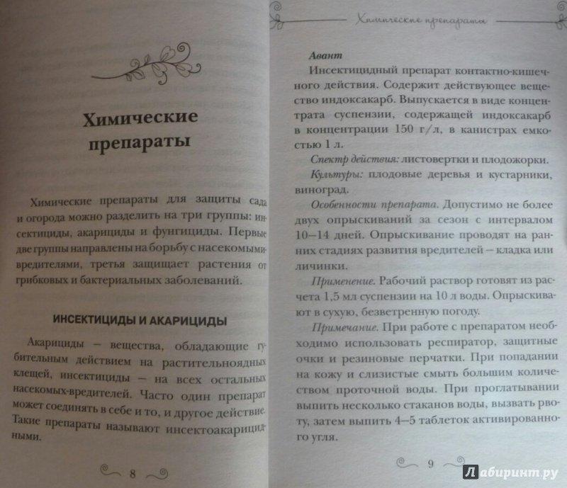 Иллюстрация 1 из 10 для Болезни и вредители плодов. Новейшие препараты для защиты - Дмитриева, Гаврилова | Лабиринт - книги. Источник: SiB
