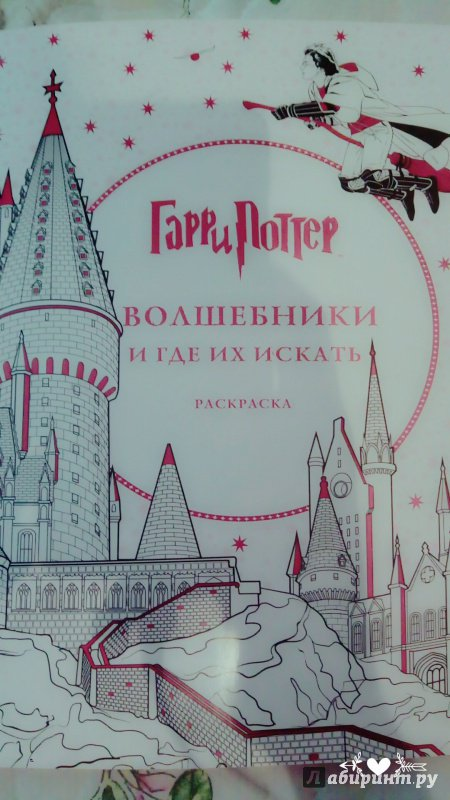Иллюстрация 56 из 60 для Гарри Поттер. Волшебники и где их ...