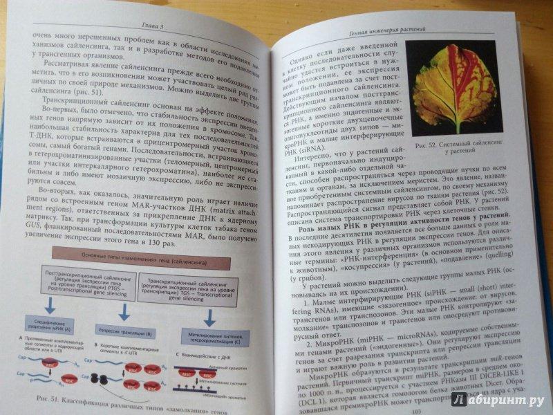 Скачать книги по биотехнологии растений