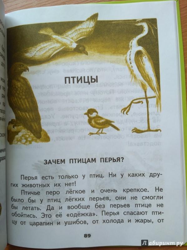 ХРЕСТОМАТИЯ ОКРУЖАЮЩИЙ МИР 2 КЛАСС ФЕДОТОВА СКАЧАТЬ БЕСПЛАТНО