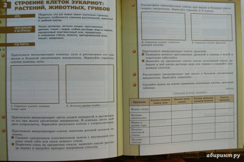 Скачать Решебник Тетрадь-практикум По Биологии Сухорукова