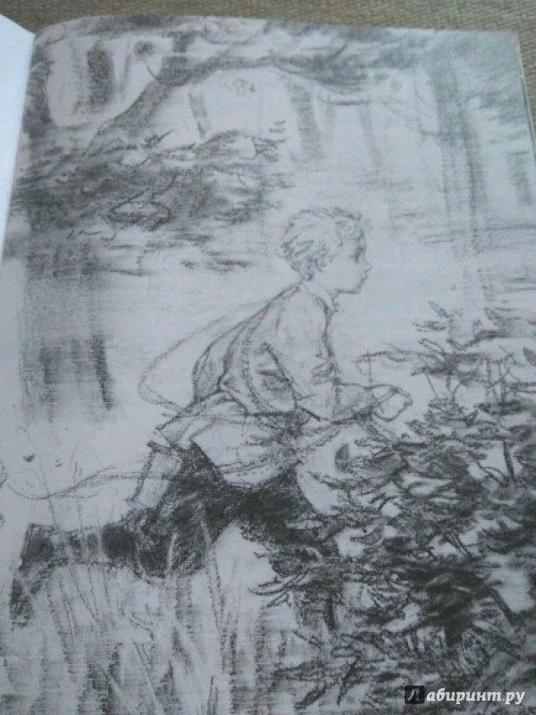 Иллюстрация 21 из 23 для Тёма и Жучка - Николай Гарин-Михайловский | Лабиринт - книги. Источник: Китанина Анастасия