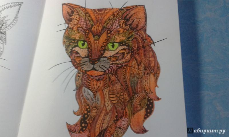 Иллюстрация 6 из 23 для Cats. Творческая раскраска ...