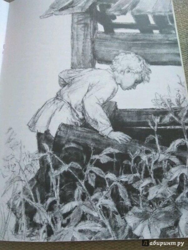 Иллюстрация 22 из 23 для Тёма и Жучка - Николай Гарин-Михайловский | Лабиринт - книги. Источник: Китанина Анастасия