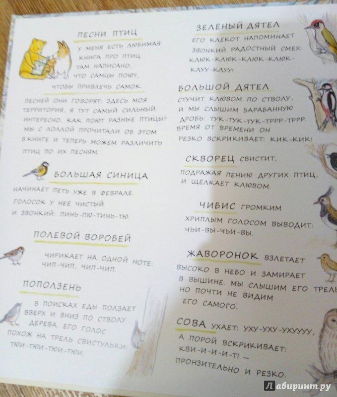 Иллюстрация 38 из 45 для Весна мишки Бруно - Гунилла Ингвес | Лабиринт - книги. Источник: Панина Елена