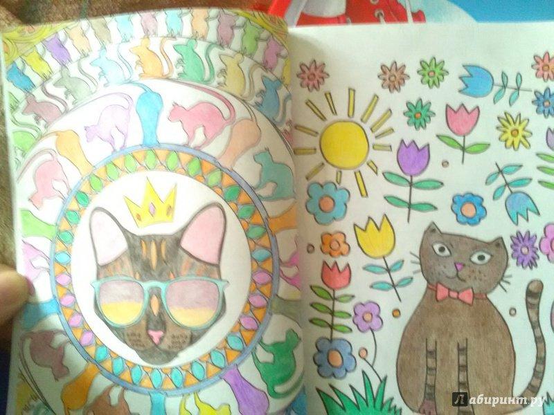 Иллюстрация 54 из 84 для Кототерапия. Мини-раскраска-антистресс для творчества | Лабиринт - книги. Источник: Лабиринт