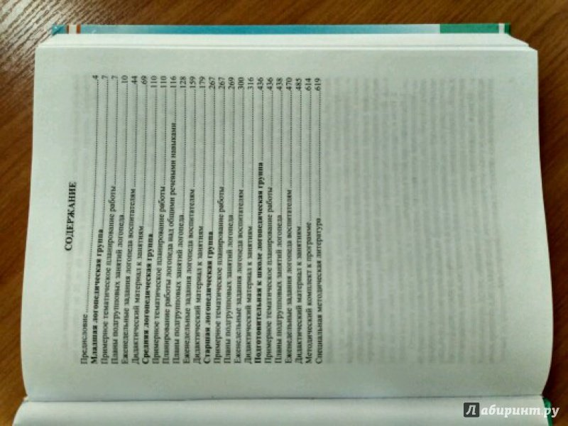 Иллюстрация 2 из 15 для Современная система коррекционной работы в логопедической группе для детей с ОНР с 3 до 7 лет - Наталия Нищева | Лабиринт - книги. Источник: Мила