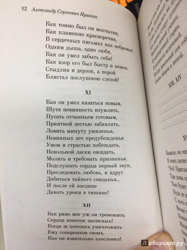 Иллюстрация 24 из 35 для Евгений Онегин - Александр Пушкин | Лабиринт - книги. Источник: Lina