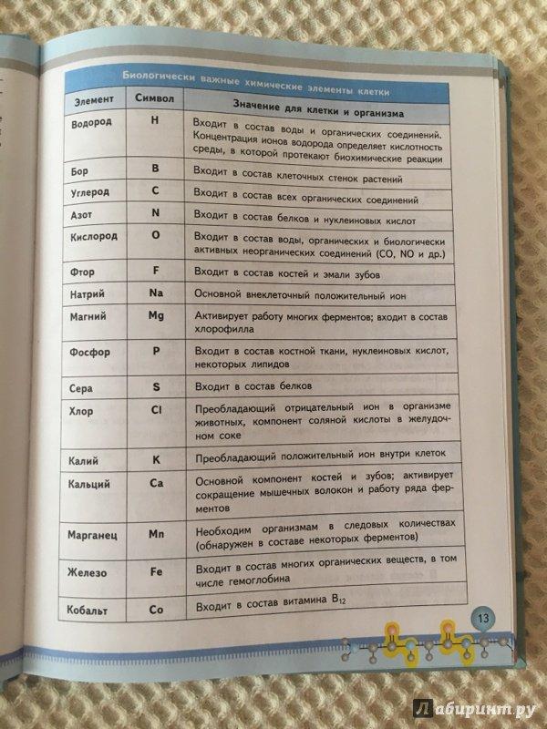 Биология 10-11 класс базовый уровень беляев дымщица