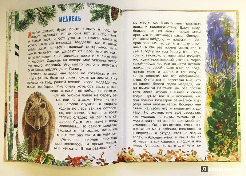 Иллюстрация 15 из 62 для Рассказы о природе - Михаил Пришвин   Лабиринт - книги. Источник: Катерина Громова