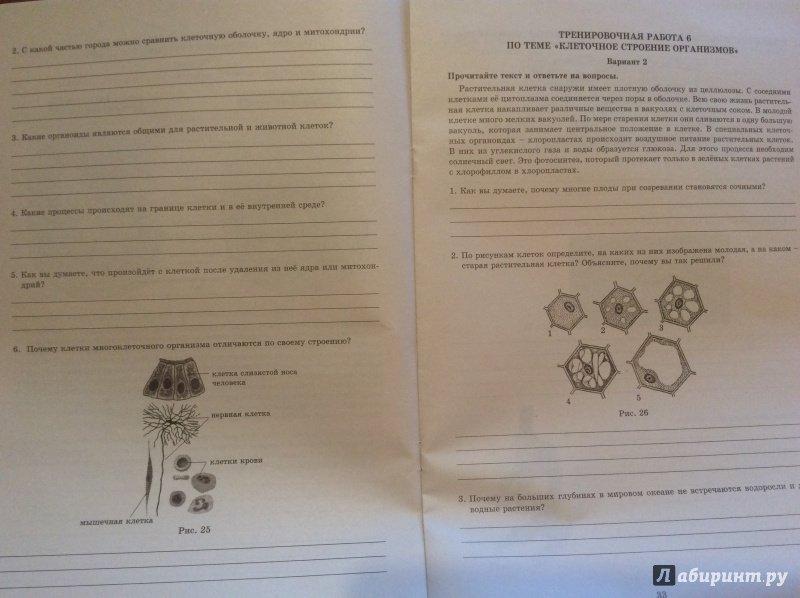 Иллюстрация 13 из 16 для Биология. 5 класс. Мониторинг успеваемости. Готовимся к ВПР - Георгий Лернер   Лабиринт - книги. Источник: Hellen