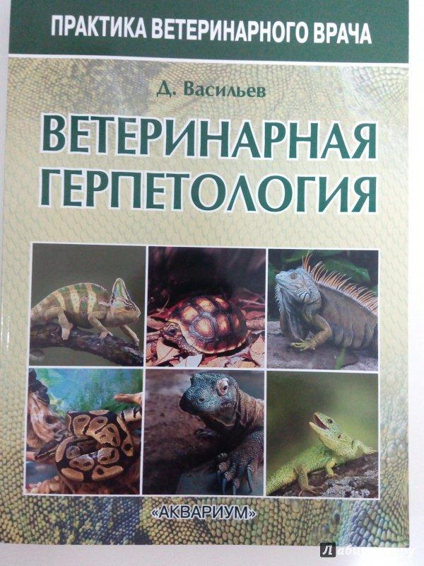 Иллюстрация 2 из 21 для Ветеринарная герпетология - Дмитрий Васильев | Лабиринт - книги. Источник: Свиридова  Виктория