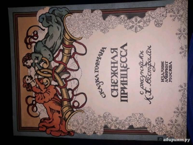 Иллюстрация 31 из 34 для Снежная принцесса - Р. Гофман | Лабиринт - книги. Источник: Андреева Евгенiя