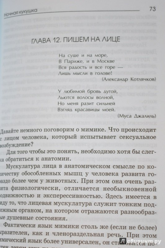 ночная кукушка александр котлячков fb2