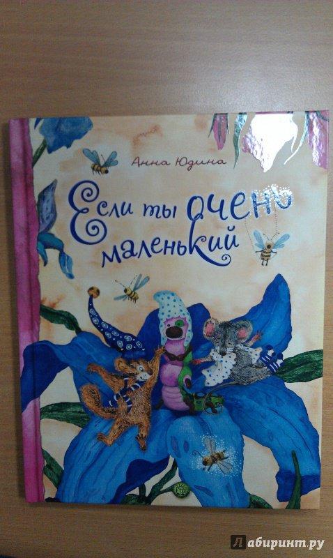 Иллюстрация 22 из 39 для Если ты очень маленький - Анна Юдина | Лабиринт - книги. Источник: Борисенко  Андрей Владимирович