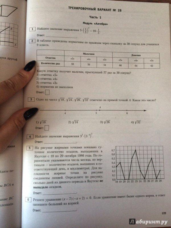 Гиа варианту решебник русский 12 в
