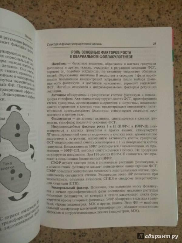 Иллюстрация 5 из 13 для Гинекологическая эндокринология. Клинические лекции - Манухин, Тумилович, Геворкян | Лабиринт - книги. Источник: Лабиринт