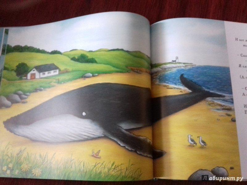 Иллюстрация 92 из 138 для Улитка и Кит - Джулия Дональдсон | Лабиринт - книги. Источник: Роза