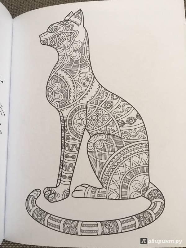 Cats. Творческая раскраска замурчательных котиков - Тейлор ...