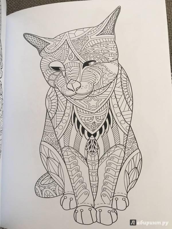 Иллюстрация 20 из 23 для Cats. Творческая раскраска ...