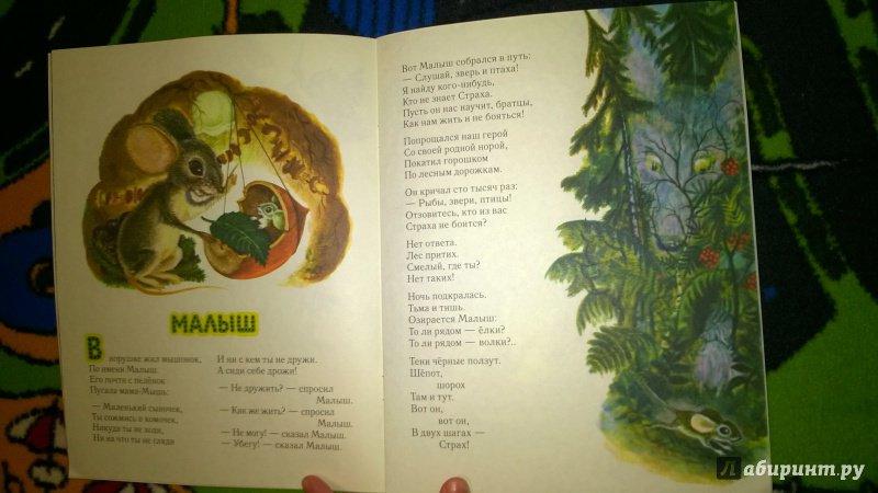 Иллюстрация 95 из 111 для Сказка о страхе - Екатерина Серова | Лабиринт - книги. Источник: Солнышко Светка