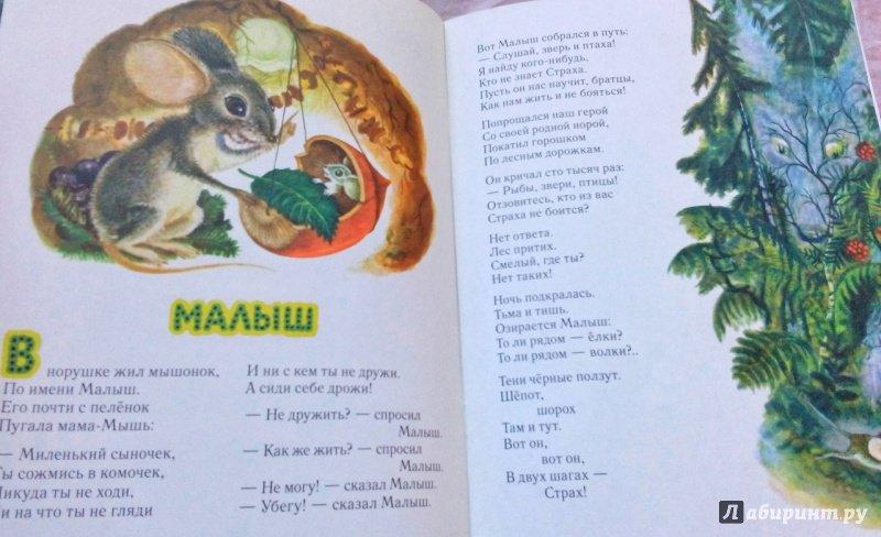 Иллюстрация 105 из 111 для Сказка о страхе - Екатерина Серова   Лабиринт - книги. Источник: Лабиринт