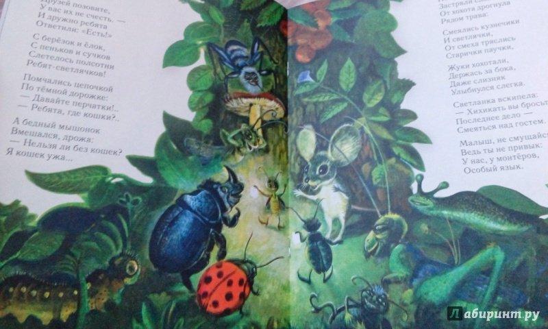 Иллюстрация 107 из 111 для Сказка о страхе - Екатерина Серова | Лабиринт - книги. Источник: Лабиринт