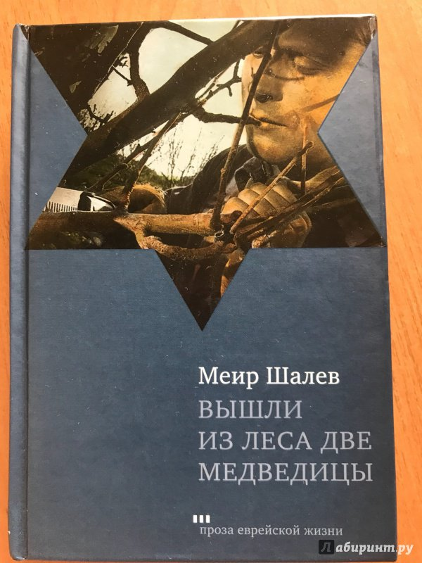МЕИР ШАЛЕВ ВЫШЛИ ИЗ ЛЕСА ДВЕ МЕДВЕДИЦЫ СКАЧАТЬ БЕСПЛАТНО