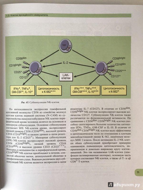 ebook The Cambridge Companion to