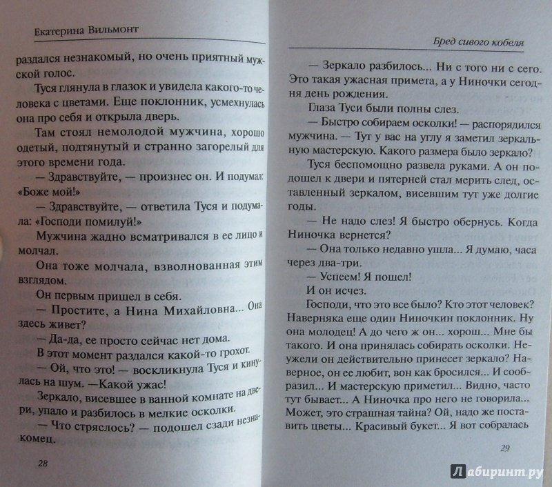 Иллюстрация 17 из 24 для Бред сивого кобеля - Екатерина Вильмонт | Лабиринт - книги. Источник: Соловьев  Владимир