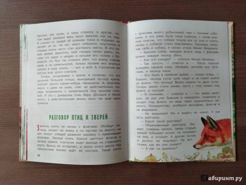 Иллюстрация 49 из 62 для Рассказы о природе - Михаил Пришвин | Лабиринт - книги. Источник: Гошева  Елена