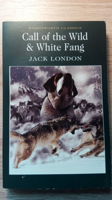 the many symbols in the book the call of the wild by jack london Themes in the call of the wild while the novel itself is a good read about one dog's journey, there are many important themes that are prevalent throughout the call of the wild by jack london a.