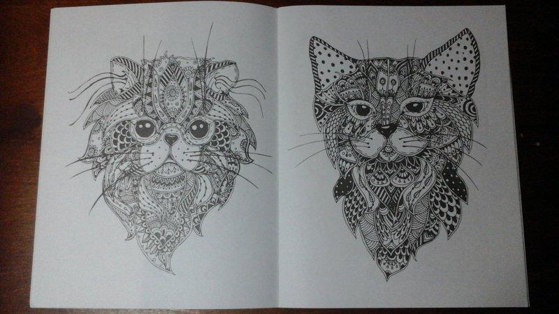 Иллюстрация 4 из 10 для Cats-2. Творческая раскраска ...
