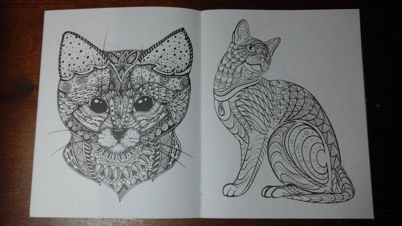 Иллюстрация 5 из 10 для Cats-2. Творческая раскраска ...