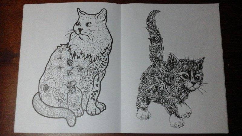 Иллюстрация 6 из 10 для Cats-2. Творческая раскраска ...